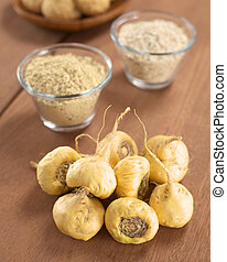 Maca Roots - Fresh maca roots or Peruvian ginseng lat...