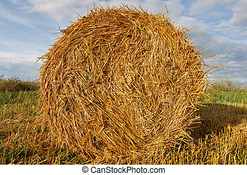 Golden hay bale on sky background