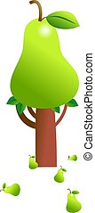 pear tree - ripe green pear growing on a tree isolated on...