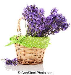 Lavender twigs in basket - Bouquet lavender in little basket...