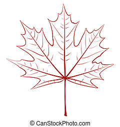 Graphic Maple Leaf - Graphic vector drawing - a maple leaf....