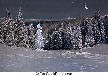 美麗, 山, 冬天, 月亮, 星, 夜晚, 風景