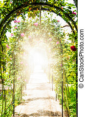 Flower garden with arches decorated with roses. - Passage...