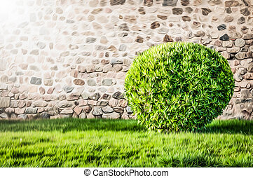 Green lawn and bush with wall in background. - Wall made of...