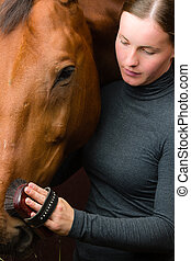 Grooming horse - Woman grooming horse in the stall, vertical...