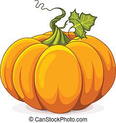 Autumn Pumpkin - Illustration of Autumn Pumpkin