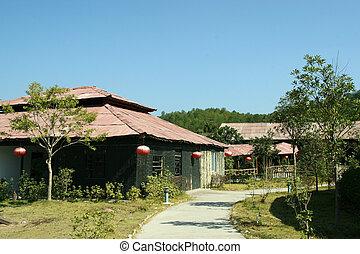 bambus, drewno, gmach, krajobraz, Wuyi, góra, Fujian,...