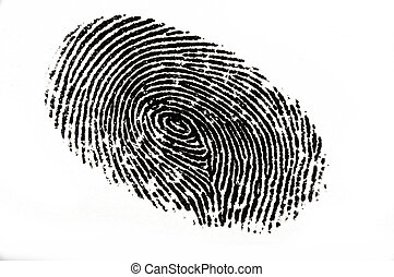 Finger Print - Isolated black fingerprint against a white...
