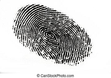 Finger Print - Isolated black fingerprint against a white...