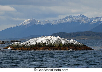 Island with birds on the Beagle Channel, Ushuaia This is...
