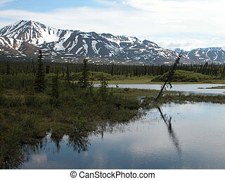 Denali Highway 2 - Alaska - This lake and beautiful...