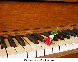 Red Rose & Antique Piano 2 - A red rose bud is displayed...
