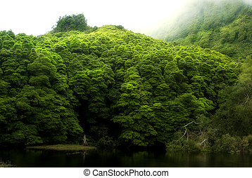 acores; lagoa das patos on flores island - waterfalls above...