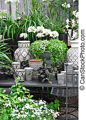 Flowers, plants and ceramics in a flower shop - Beautiful...