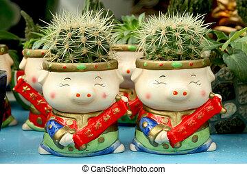 vasi fiori