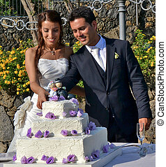 Spouses  - The bride and groom cut the wedding cake