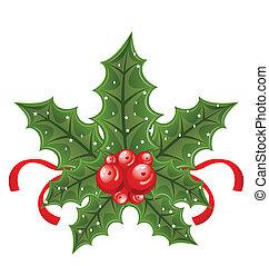 navidad, acebo, baya, ramas, cinta, aislado, blanco, espalda