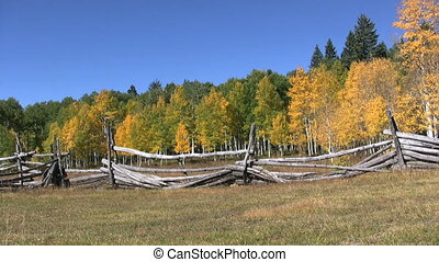 Mountain Scenic in Fall - a mountain scenic with aspen in...