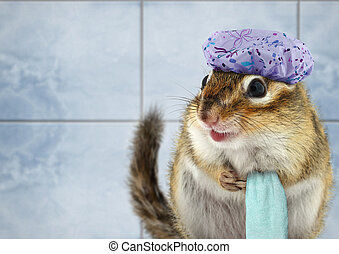 Funny chipmunk bathing - Funny chipmunk with towel bathing