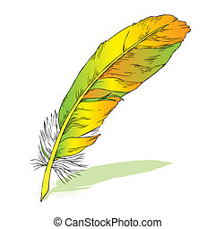writing feather with shadow - Yellow writing feather with...