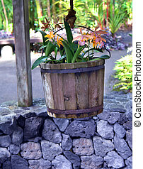 Botanical Garden Wishing Well - Wooden bucket is suspended...