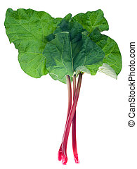 Rhubarb - Fresh red rhubarb isolated on a white background....
