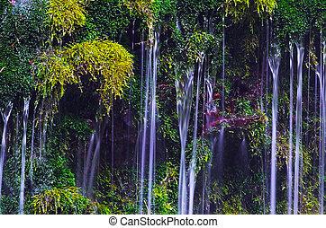 Mototakihukuryuusui Falls, Chokai National Park, Japan.