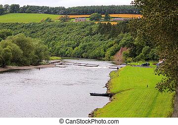 stream in Scotland