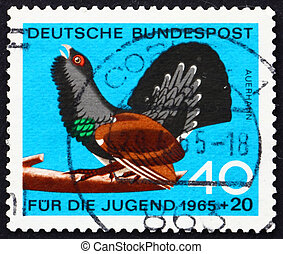 Postage stamp Germany 1965 Capercaillie, Tetrao Urogallus -...