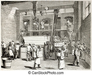 Stevens bakery - Stevens Company Bakery old illustration,...
