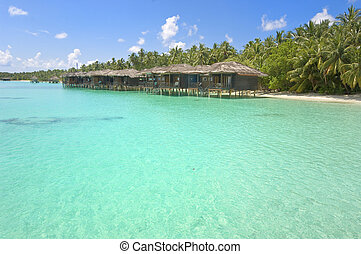 water bungalows - Color picture of water bungalows at...