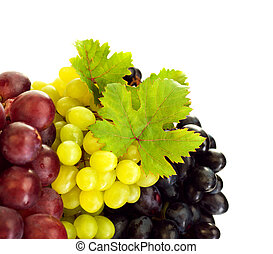 Different kind of grapes - Photo of grapes variety,...