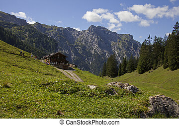 Mountain hut at a Alpine pasture