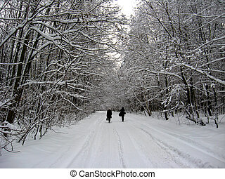 Two people going on winter road - Winter landscape with two...