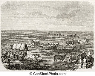 Pampas - Old illustration of a convoy in the pampas,...