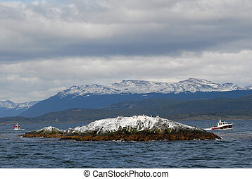 Two ships in the Beagle Channel, near island with birds....