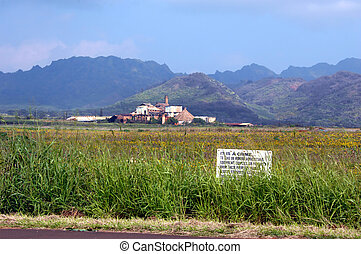 Cane Closure - Sugar cane mill lies closed and rusting on...