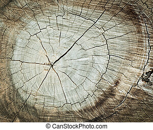 Grunge of texture wood materials background - Grunge of...