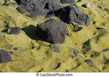 Big Island Green Sand - Green sand covers beach at South...
