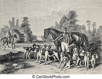 Hunting dog pack - Antique illustration of hunting dog...