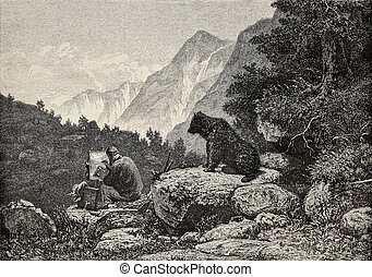 Indiscreet bear - Old illustration of an indiscreet bear...