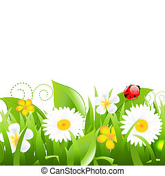 Flowers With Grass Leafs And Ladybug, Isolated On White...