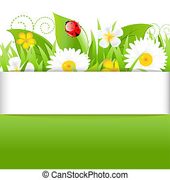 Poster With Grass Leafs And Ladybug, Isolated On White...