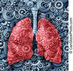humano, Pulmones, función