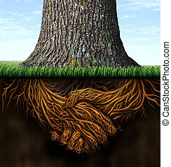 Strong Business Roots - Strong deep business roots as a tree...