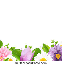 Summer Flowers With Leaf Border, Isolated On White...