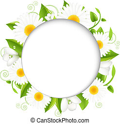 Summer illustration With Camomiles, Isolated On White...