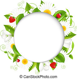 Summer illustration With Camomiles And Ladybug, Isolated On...
