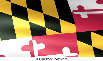 Maryland State Flag Waving