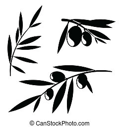 Graphic olive tree branches - Graphic silhouettes of olive...